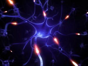 【Y#61】瞑想会・CALM TALK -AIRに参加して〜瞑想について、どこまで脳医科学は解明してきたのか?について学ぶ