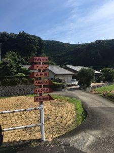 【J#54】熊野と伊勢神宮(4)〜熊野付近の神社散策:自然を触れる旅になった。